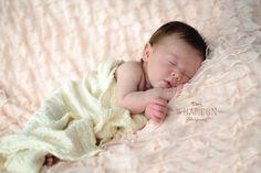 Baby Photos, Newborn Photos, Nashville TN Photographer Copyright of Tori Wharton Photography www.toriwharton.com