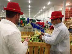 El director del Info conoce la Industria 4.0 de Frutas El Dulce