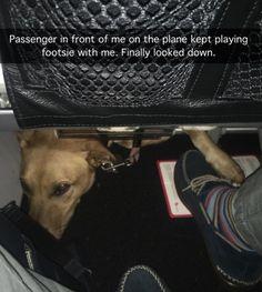 The Humor Train - via