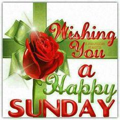 223 Best HAPPY SUNDAY ...