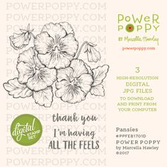 Power Poppy Digital Digi Stamp Set featuring a trio of funny-faced pansies. Illustration by Marcella Hawley, along with two sentiments.