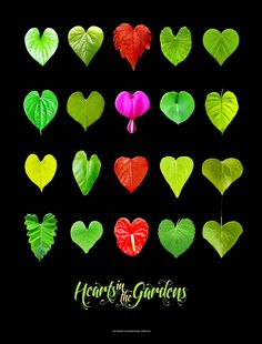 Hearts in the Gardens black poster version