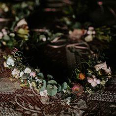 Apró bogyókból és virágok bimbóiból készülő koszorú Plants, Accessories, Plant, Planets, Jewelry Accessories