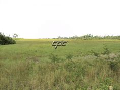 433 Acres West of Belmopan