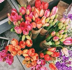 Tulips, roses, fresh flowers, bouquet of flowers