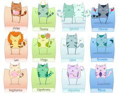 Zodiac cats!