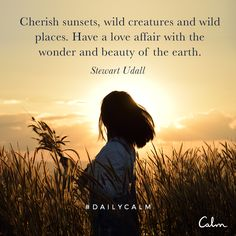 Cherish sunsets, wild creatures and wild places. Have a love affair with the wonder and beauty of the earth. — Stewart Udall Quote from the Daily Calm