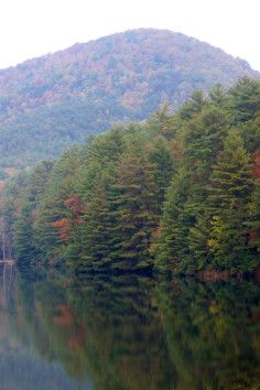 Unicoi State Park & Lodge is a Community Park in Helen. Plan your road trip to Unicoi State Park & Lodge in GA with Roadtrippers. Best Places To Camp, Places To See, Georgia State Parks, Minnesota Camping, Park Lodge, Hiking Spots, Mountain Vacations, Thing 1, Beautiful Places To Visit