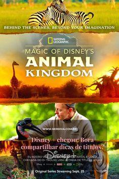 Disney Animal Kingdom, Disney Pixar, Disney Magic, Walt Disney, National Geographic, Animal Experiences, Save Wildlife, Kingdom Come, Marvel