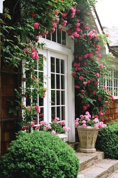 Nantucket Cottage with Climbing Roses