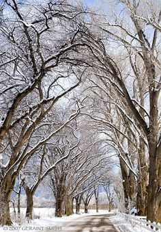 A Taos Road in Winter by Geraint Smith.