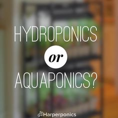 #hydroponics or #aquaponics? What do you use and why?