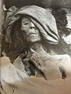 """One of the three mummies discovered in the first chamber of Tomb no KV 35 (Valley of the Kings) in 1900 , the so-called """"elder lady"""" which might belong to Queen Tiye, the favourite consort of Amunhotep III and grandmother of Tutankhamun Ancient Egypt History, Ancient Aliens, Ancient Greece, Egyptian Queen, Egyptian Art, Egypt Mummy, Egyptian Mummies, Old Egypt, Valley Of The Kings"""
