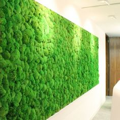 Moss Walls add colour and texture to any space. Preserved moss walls need little maintenance, yet retains its vivid green, soft and tactile appearance. Moss Decor, Mood Board Interior, Faux Grass, Moss Art, Exhibition Stand Design, Corporate Interiors, Wall Finishes, Reception Areas, New Home Designs