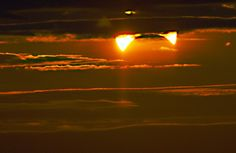 The partially eclipsed Sun disappearing into the clouds, as seen from New York City, Nov. 3, 2013 at 6:30 A.M. Credit and copyright: Ben Berry.