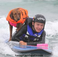Surf Dog Ricochet, surfs with special needs kids and people with disabilities as an assertive aid (here with Quadriplegic Surfer Patrick Ivison) Service Dog Training, Dog Training Videos, Service Dogs, Beverly Hills 90210, Unusual Animal Friendships, Old Golden Retriever, Amor Animal, Special Needs Kids, Special Friends