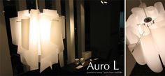 auro_L.png