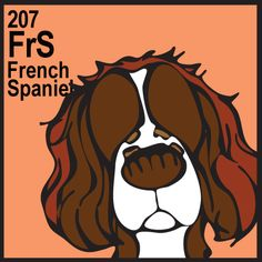 French Spaniel