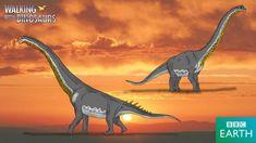 Walking with Dinosaurs: Brachiosaurus by TrefRex
