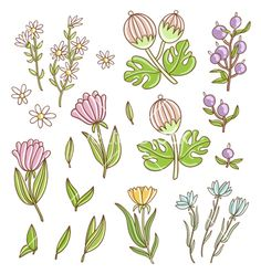 Isolated nature floral set vector  by stolenpencil on VectorStock®