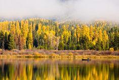 Canoeing Rainy Lake by Jason Savage