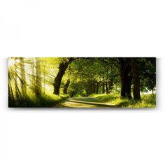 Yeşil Yol Panorama Tablosu Country Roads