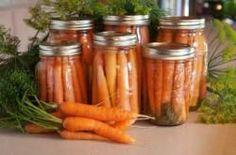 Karotten einlegen