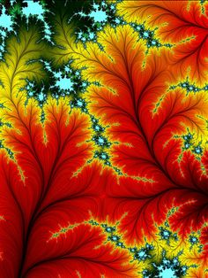 Dazzling Fall Colors! ♥ ♥ www.paintingyouwithwords.com