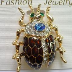 Google Image Result for http://static.traderscity.com/board/userpix75/34178-Fashion-Enamel-Dung-Beetle-Bug-Jewelry-Gold-Rhinestone-Brooch-Pin-Jewellery-Accessories-Factory-2011-1.jpg