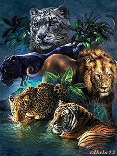 рисунки диких кошек - Поиск в Google