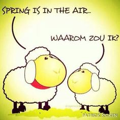 spring is in the air Wisdom Quotes, Words Quotes, Me Quotes, Funny Picture Quotes, Funny Pictures, Dutch Words, Spring Quotes, Dutch Quotes, Lol