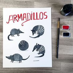 Today's drawing: armadillos. I love these guys, and they're fun to draw because of all the white texture on simple grey shapes. #armadillo #illustrationoftheday #doodleoftheday #handlettering
