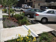 As municipalities, commercial developers and private landowners increasingly turn to green infrastructure to manage water at the site and regional level, plants and managed landscapes are taking a leading role.