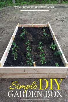 DIY Garden Box | www.Livingsurrendered.com #garden #box #organic