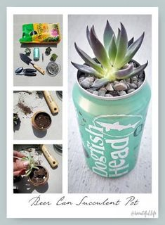 Beer Can Succulent Planters | Brewtiful Life #beerdecor