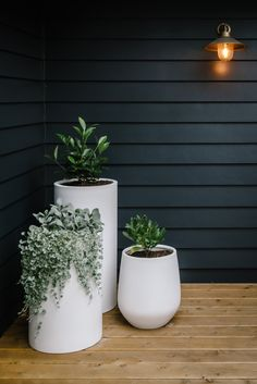 Deck Planters, Balcony Plants, Planter Pots, Deck Plants Ideas, Balcony Garden, Outdoor Potted Plants, Pot Plants, Backyard Patio, Backyard Landscaping