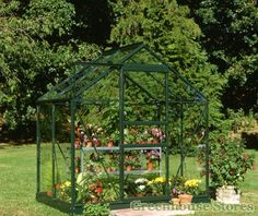 Halls Popular Silver 6x4 Greenhouse glazed with 4mm Toughened Glazing from Greenhouse Stores. http://www.greenhousestores.co.uk/Halls-Popular-6x4-Green-Greenhouse-3mm-Horticultural-Glazing.htm