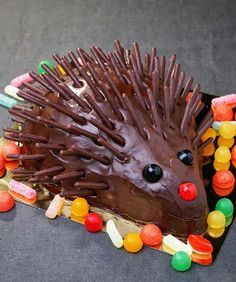 Gateau anniversaire hérisson chocolat mikado