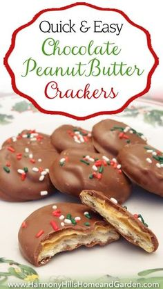 Chocolate Peanut Butter Crackers - A quick and easy treat for the holidays