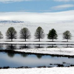 Stay in the snow - Sani Valley Lodge in Sani Pass, KwaZulu Natal, South Africa Snow Images, Bing Images, Snow Leopard Pictures, Yellowstone National Park, National Parks, Aurora Snow, Kwazulu Natal, Snowy Mountains, Winter Storm