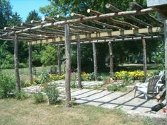 A rustic pergola made out of a tree! Description from pinterest.com. I searched for this on bing.com/images
