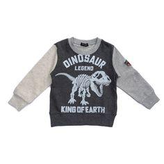 Sweatshirt (Dinosaur) - Dark Grey – Kotachi Kids