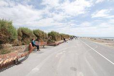 """El """"Banco más Largo"""", un proyecto que cambió un paseo costero en Reino Unido"""