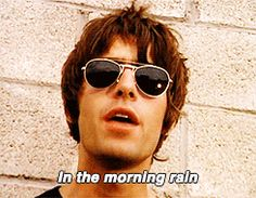 Love Forever- my absolute favourite! Oasis Music, Morning Rain, Liam Gallagher, Rock Music, Moonlight, Bands, Alcohol, Guys, Noel