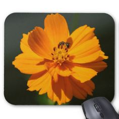 Bee Mousepad. Mouse Pad