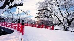 Image result for winter nature images