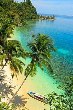 Maluku Island . Indonesia