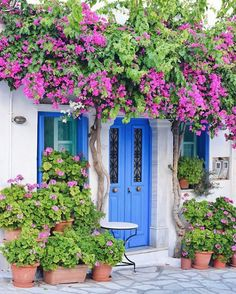 Pyrgos Tinos Greece Wanderlust In 2019 Greece Painted Doors Tinos Greece, Beautiful Flowers, Beautiful Places, Front Door Colors, Unique Doors, Painted Doors, Greek Islands, Doorway, Windows And Doors