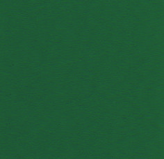 7277 Forest Green