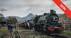 Enjoy a relaxing steam train ride through the Western Cape countryside, before enjoying a wonderful spread of refreshments at the Elgin Railway Market. Stuff To Do, Things To Do, Good Things, South African Railways, Train Rides, Train Trip, Train Travel, Cape Town, Countryside